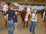 Jr. National Hereford Show