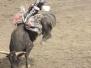 Rodeo GI - Xtreme Bulls Tour