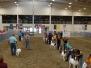 Am. Boer Goat Assn - National Show