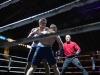 thumbnail_boxing-5