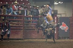 Rodeo GI - Xtreme Bulls