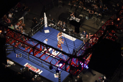 Shotime Boxing