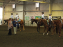 State 4-H Horse Show