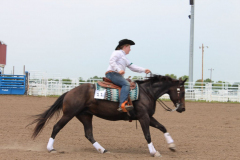 State 4H Horse Show